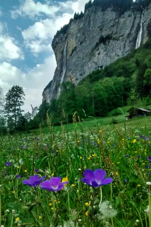 Hiking Guides Swiss Alps