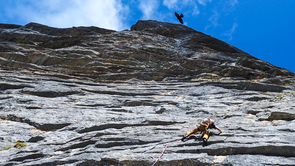 Rock Climbing Guides Swiss Alps